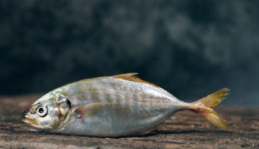 魚の目が手にできて、皮膚科に行ったら、一瞬治ったかのように見えたが、パワーアップして復活!